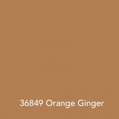 36849-Orange-Ginger