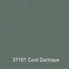 37101-Cool-Zactique