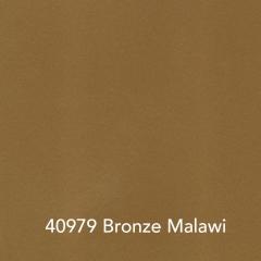 40979-Bronze-Malawi