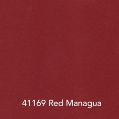 41169-Red-Managua